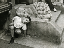 Untitled, New York (boy with lion)